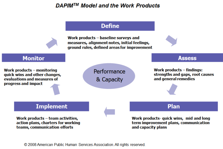 American Public Human Services Association's DAPIMTM model for continuous improvement.